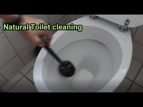 Natural Toilet cleaning Tutorial / DIY Toilet bowl cleaner with ...