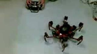 LM Phoenix RC demo