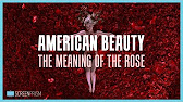 capturing the beauty in american beauty a video essay  6 39