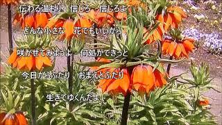 {新曲}今日からふたり/増位山太志郎    cover/K(神戸のカラス)