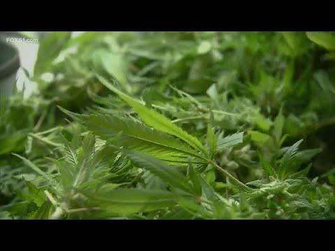 State senate to revote on recreational cannabis legislation