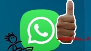 Cara Mudah Membuat Sticker WhatsApp Sendiri dari Foto Pribadi