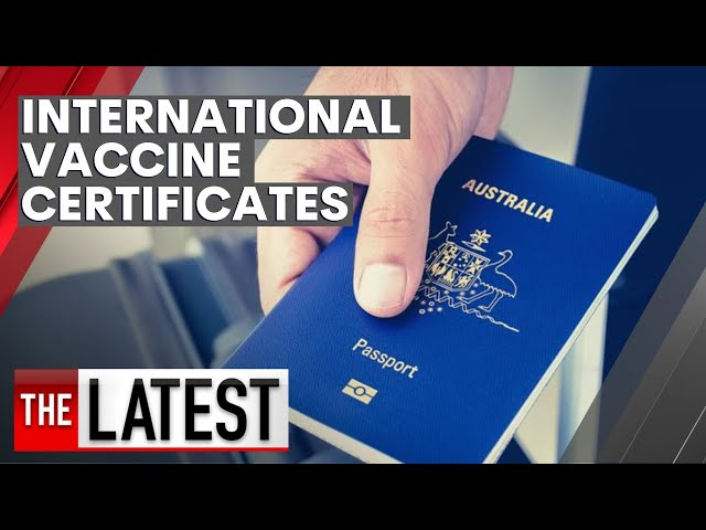 Australians set to be able to download international international travel certificate | 7NEWS