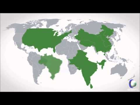 LA VERDAD SOBRE LA ECONOMÍA GLOBAL.