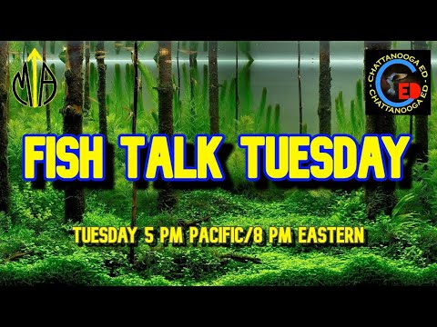 Fish Talk Tuesday