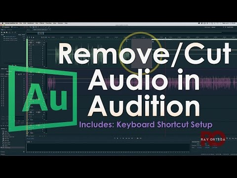 Removing/Cutting Audio in Adobe Audition