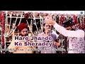 Hare Jhande ke Shezade   Mir Safwan Ali Qadri   in Syed Habeeb Chishti Sahab's Residence - 2018 19