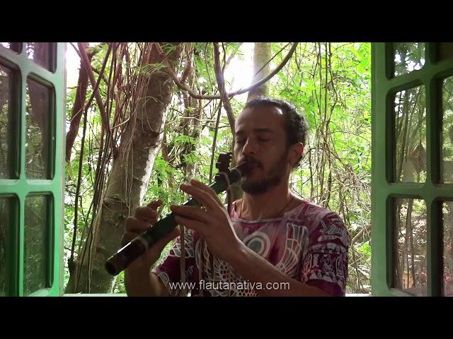 Tótem de flauta nativa Falcão A 432 - Flauta de estilo nativo americano