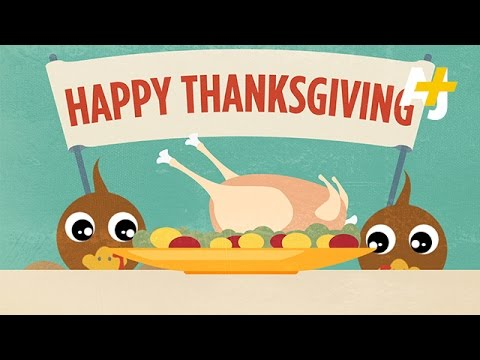 Thanksgiving Turkey – How Does It Make It To Your Plate?
