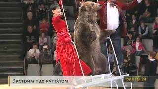 Цирк Витали на ГТРК Кубань-24