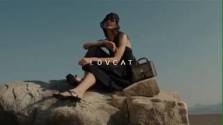 러브캣 LOVCAT 20SS AD Campaign