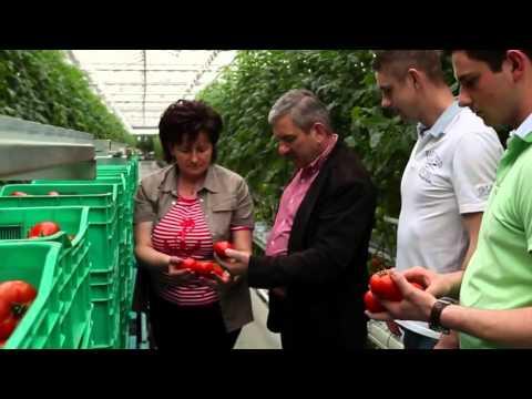 Работа в Волоколамске - 724 вакансии в Волоколамске, поиск