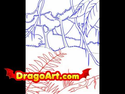 How To Draw A Rainforest Step By