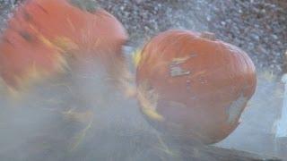 Smashing pumpkins with Sporting Rifle reviewer Tim Pilbeam