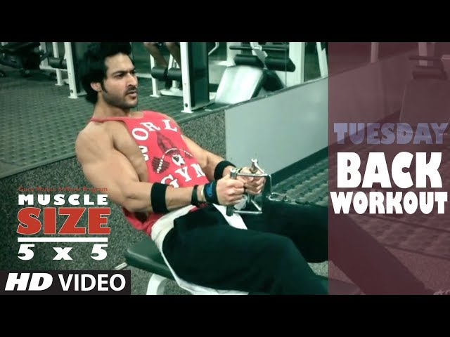 Tuesday : BACK WORKOUT |