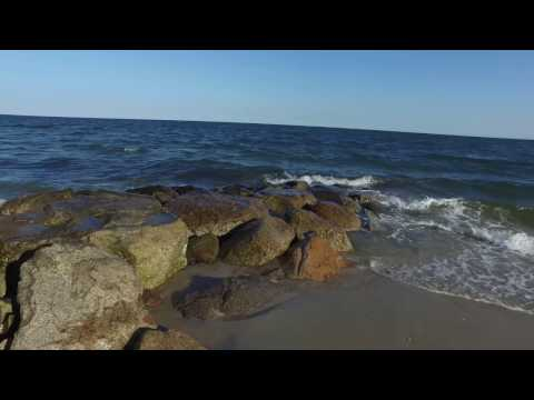 A Year of Separation: BEAUTY Cape Cod