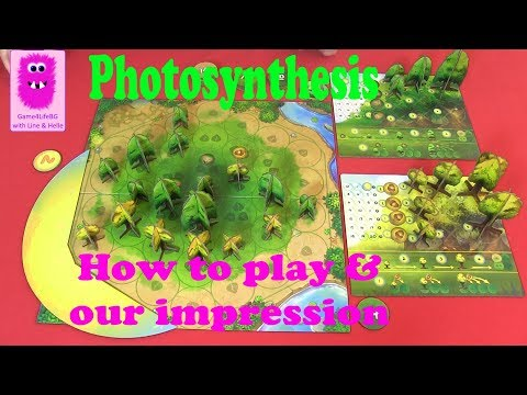 Photosynthesis, How to play & our impression (In English, board game)