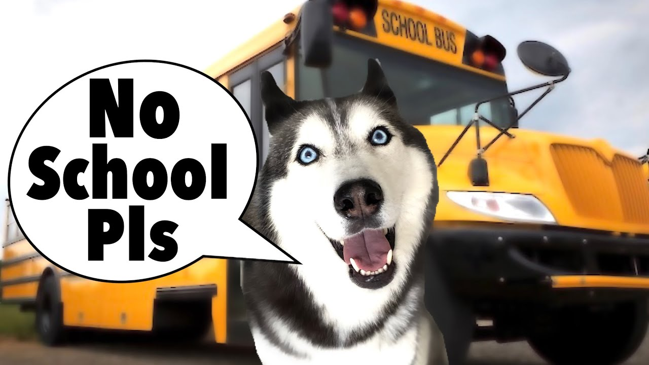Meeka Gets Ready For Her First Day Of School! (THROWS A FIT)