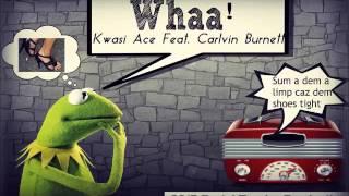 Kwasi Ace & Carlvin - Whaa (Guyanese Song) - September 2015 | @GazaPriiinceEnt