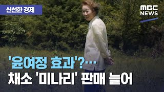 [신선한 경제] '윤여정 효과'?…채소 '미나리' 판매…