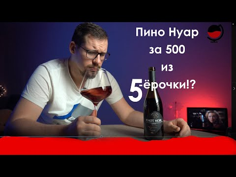 Пино Нуар за 500!!!!!!!!!!!!!! Франция!Самый дешёвый в сети Пятёрочка. Какое вино купить в магазине?