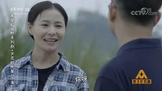 《普法栏目剧》 20191009 希望的田野系列剧·芦花的晚餐(下集)| CCTV社会与法