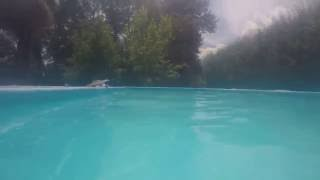 GoPro Hero 5 Black - Prueba bajo el agua (pileta)