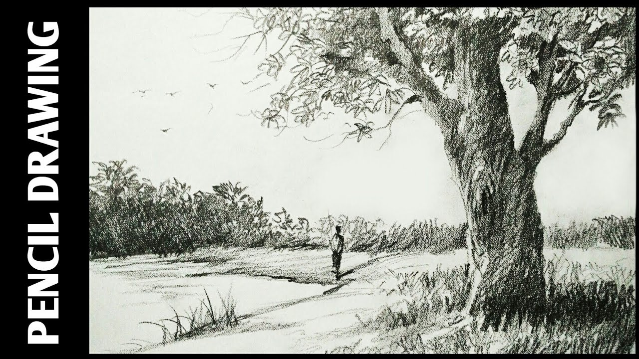 Landscape drawing for beginners with pencil sketching and shading simple pencil drawing