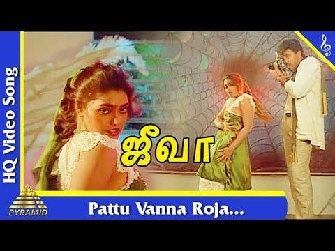 Pattu Vanna Roja  Song Jeeva Tamil Movie Songs  Sathyaraj  Silk Smitha  Pyramid Music
