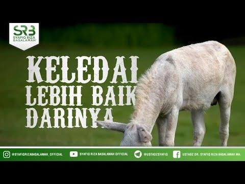 [ Bukit Tinggi ] Keledai Lebih Baik Darinya - Ustadz Dr Syafiq Riza Basalamah MA