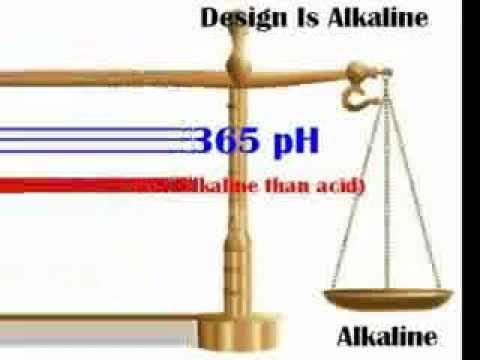 Body pH Balance Alkaline the Key to Health