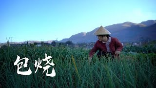 Download Video 芭蕉叶烹饪的云南菜:包烧【滇西小哥】 MP3 3GP MP4