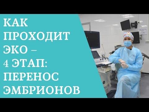 Как проходит ЭКО – 4 этап: перенос эмбрионов