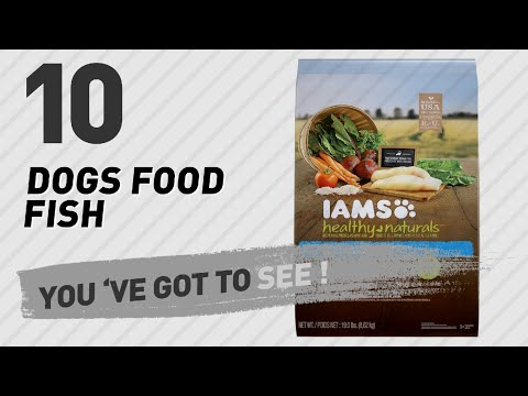 Dogs Food Fish // Top 10 Most Popular