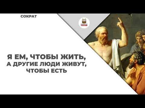 Сократ цитаты и афоризмы