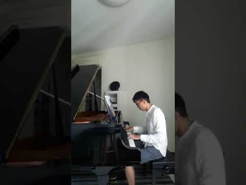 Pachelbel Canon in D played by Wee Peng, pianojoys.com