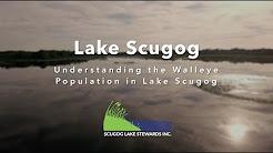 Walleye Watch - Understanding the Walleye Population in Lake Scugog