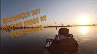 The Forebay Kayak Striper Chase Oct 31 2020