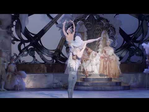 EXTRACT | SLEEPING BEAUTY 'Blue Bird Pas de deux' Tchaikovsky - Finnish National Opera and Ballet