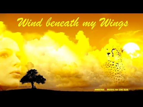 WIND BENEATH MY WINGS / BETTE MIDLER - cover by ANEEMA