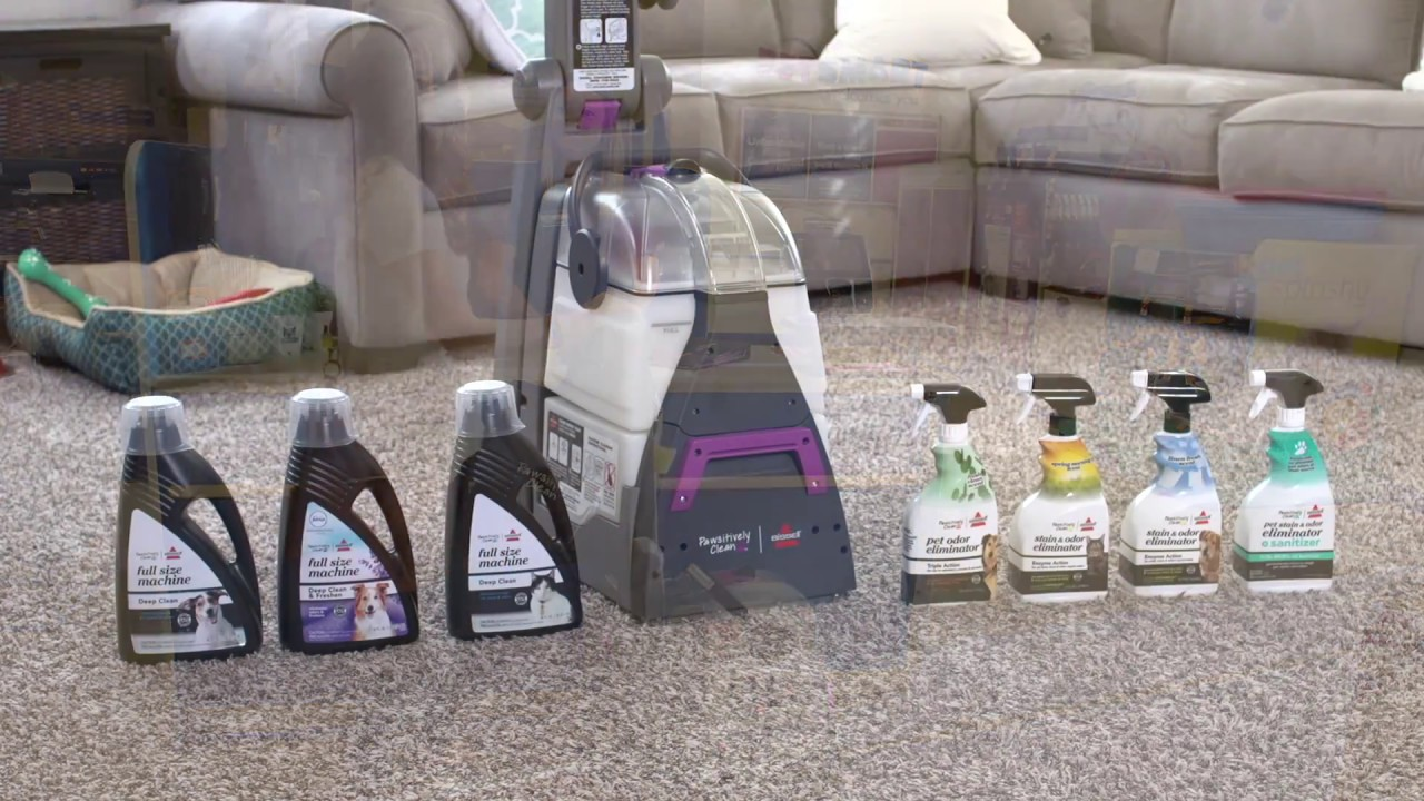 how to rent the pawsitively clean by bissell rental carpet cleaning machine