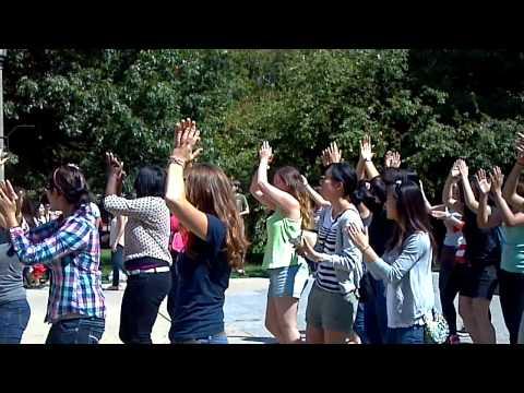 UIUC Gangnam Style Flashmob 01