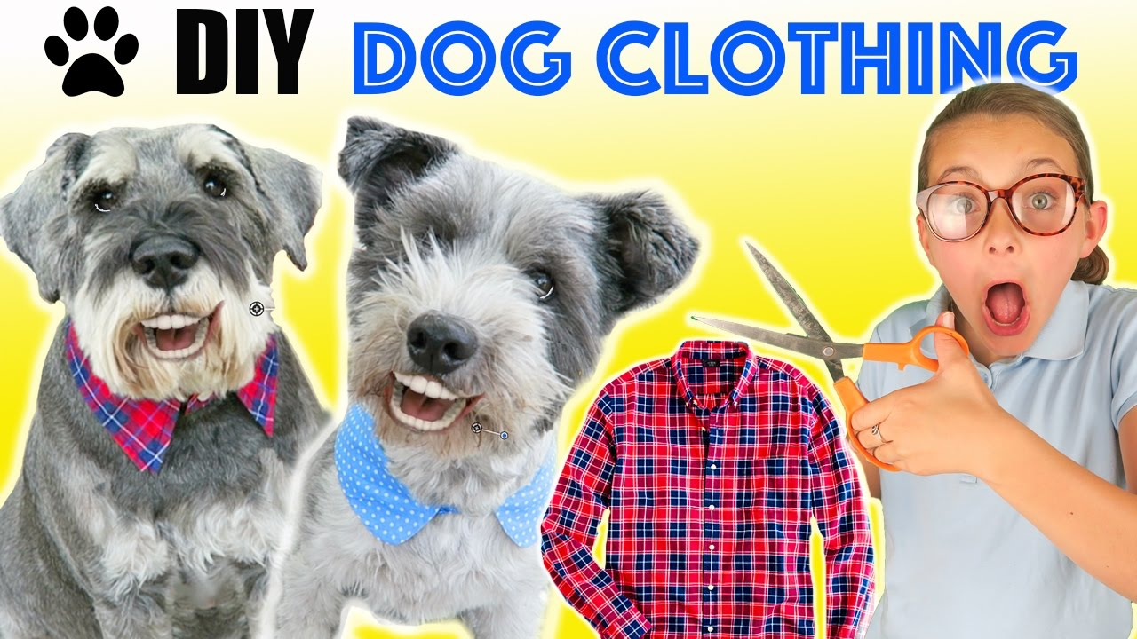 How to make diy funny upcycled dog clothes dog collar for How to make a shirt for your dog
