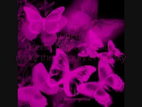 Butterfly -DDR lyrics