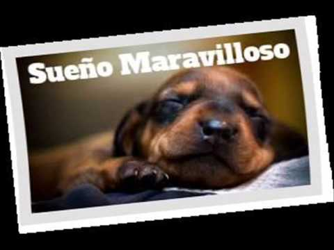 Sombra Azul - Sueño Maravilloso Rmx ★ Cumbia ★ Dj Leo Mix