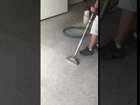 Short Carpet Clip by Meyer Carpet Cleaning