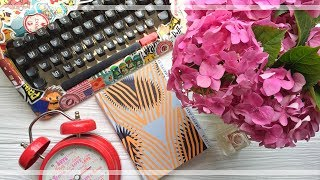 Фіксація внутрішнього стану/Артерія/ВСЛ/огляд/lookbook thumbnail