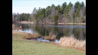 Pocono Communities: Camelot Forest