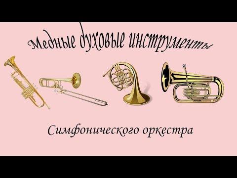 Оркестр Инструменты симфонического оркестра