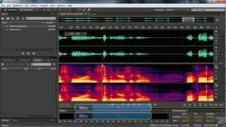 Adobe Premiere Pro CS6 Tutorial | Noise Removal | InfiniteSkills